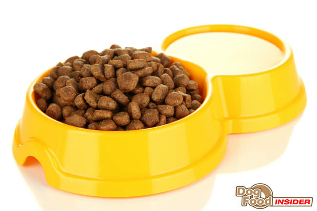Rotating Dog Food - Is It A Good Idea?